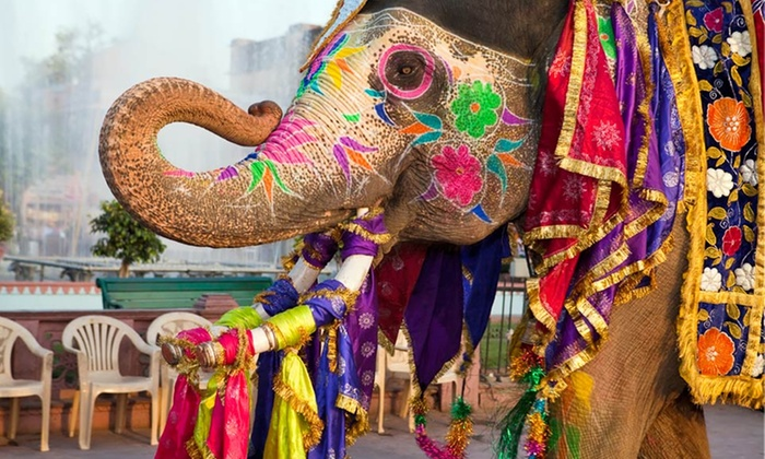 Elephant Festival on Holi in Jaipur, Rajasthan