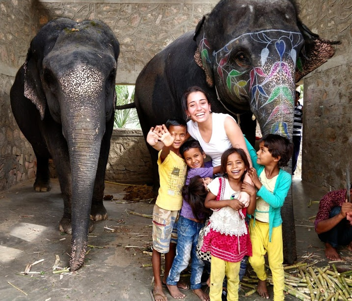 India elephant volunteering