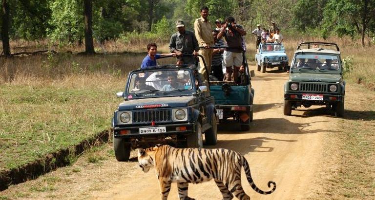 jeep-safari-kanha