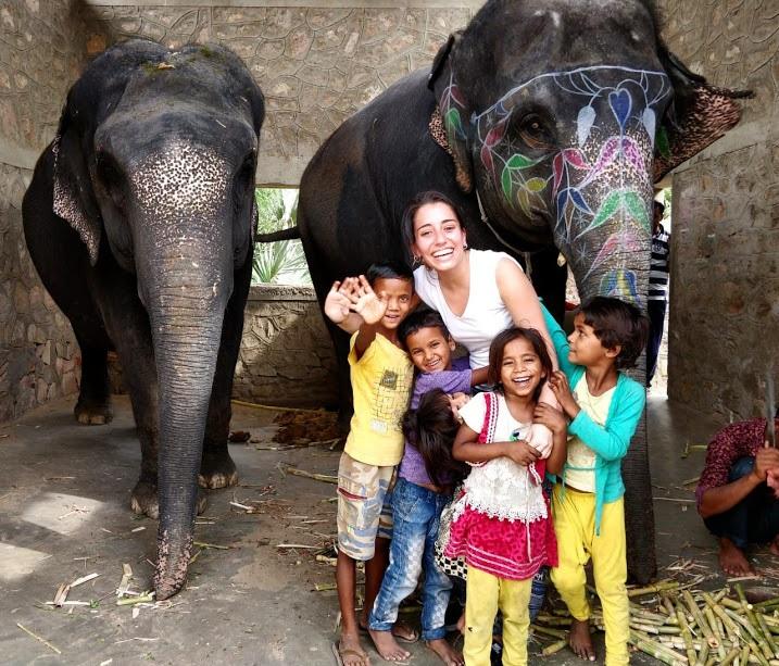 India elephant volunteering